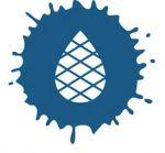 Blue Cedar Printworks